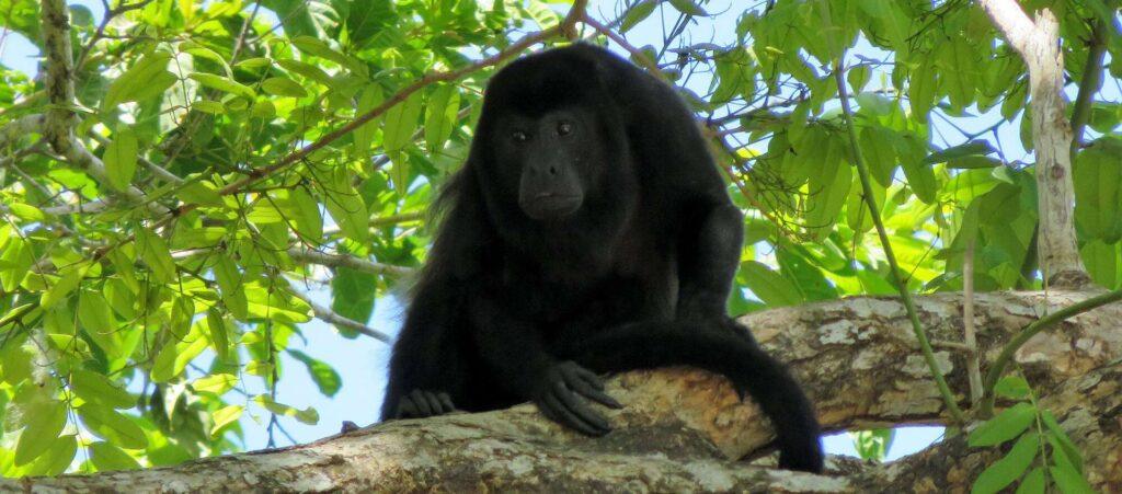 Costa Rica Wandern