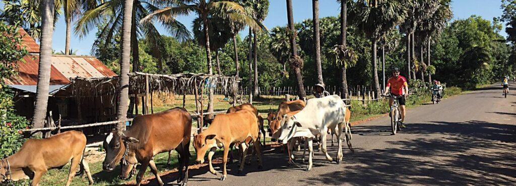 Vietnam Radreisen