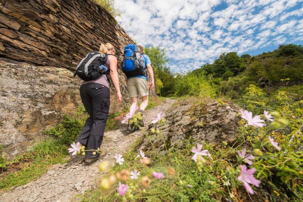 Wandern Mosel Steig Deutschland Wanderweg