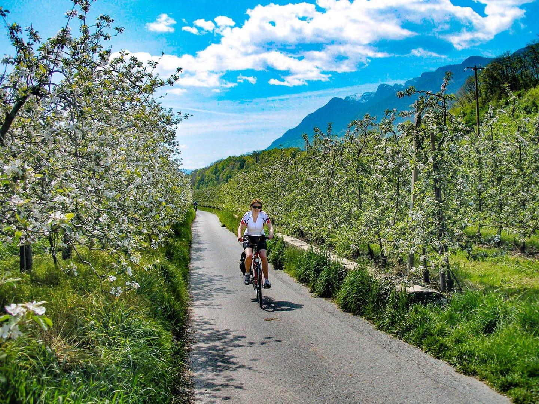 Radweg Italien Südtirol Brixen Sternfahrt